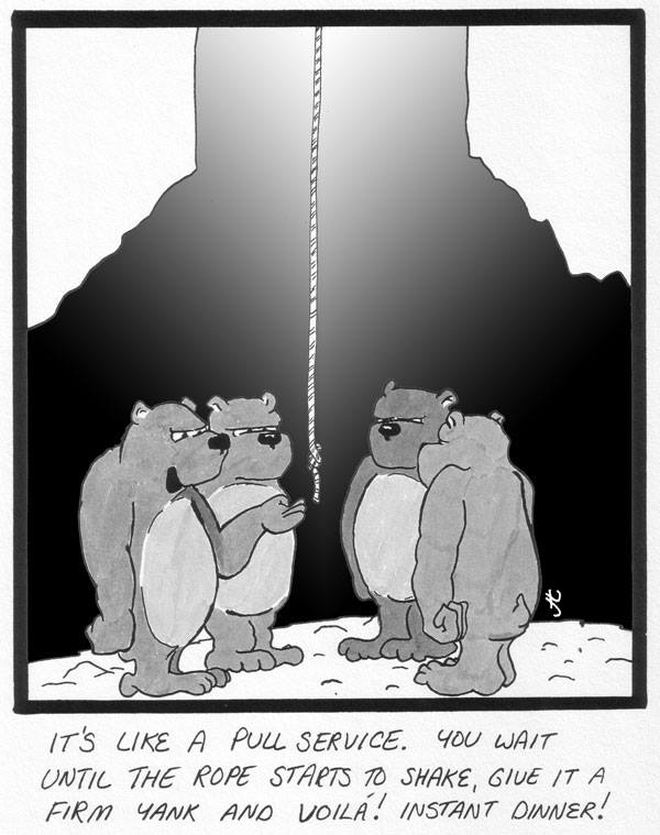 grimm bears