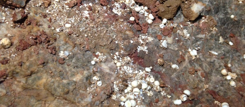 Research: Searching for Cryogenic Cave Crystals