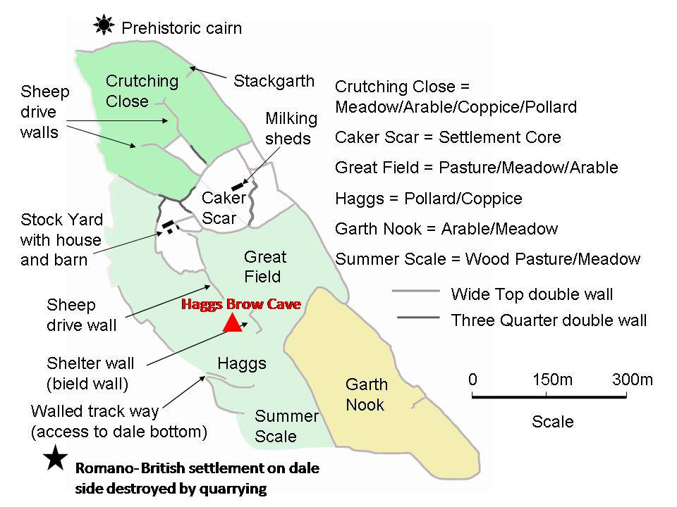 Fig.3. Haggs Brow Cave in relation to the infield area of the medieval stock farm at Winskill belonging to the Cistercian monastery of Sallay Abbey.