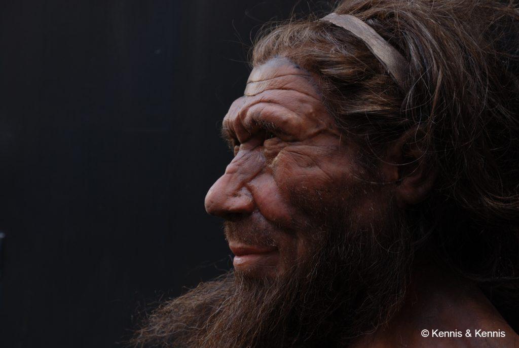 Neanderthal1