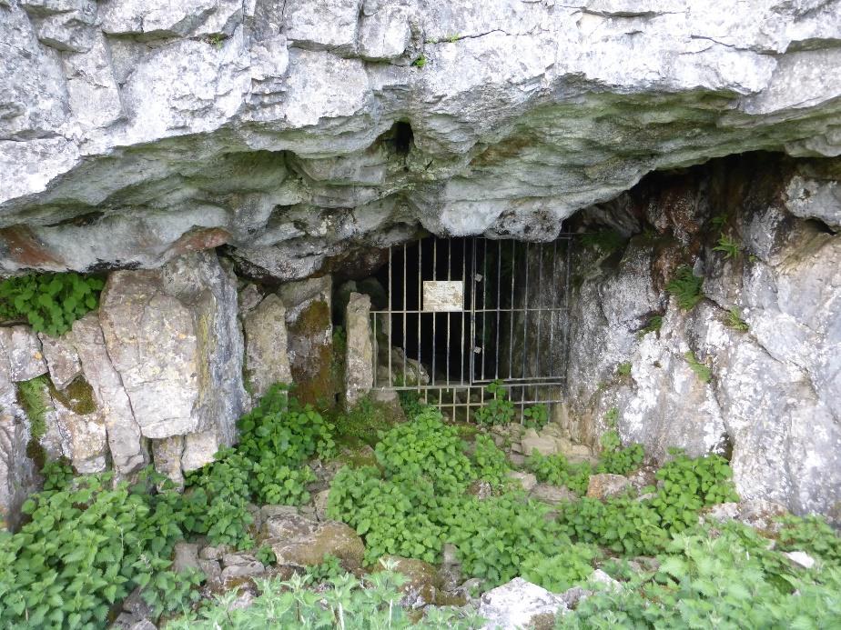 Albert Cave