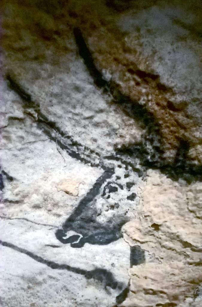 In the Hall of the Bulls, Lascaux IV