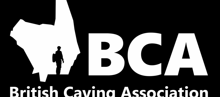 BCA Newsletter now available